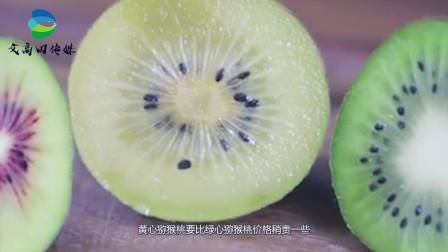 黄心猕猴桃和绿心猕猴桃价格相差很大,二者营养上有差别吗?