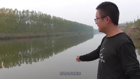 野钓湖库,第一次来这地方,一把小米撒下去,鱼儿一条接一条上