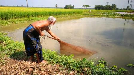 家里没肉下饭了,70岁老爷爷去野外撒一网,看看他收获了多少?