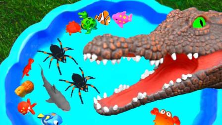 越看越有趣!你知道大猩猩跟蜘蛛平时最喜欢干什么吗?趣味玩具故事