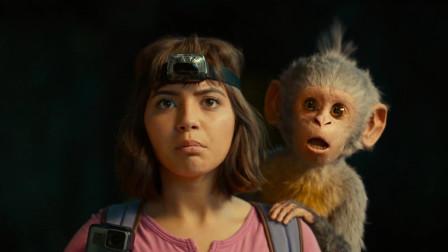 女孩救下一只小猴子,猴子送了一笔宝藏报答她,一部动物冒险电影