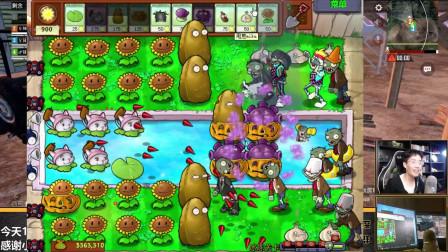 奇怪君 植物大战僵尸95版隐藏关卡-冰冻关卡,植物大战僵尸游戏实况