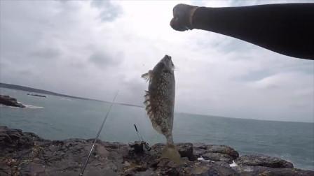 海钓中拖鞋级大泥猛,这鱼的拉力真不是盖的!