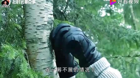 """农民发现自家树上长出""""毒瘤"""",专家鉴定后,表示价值和黄金差不多"""