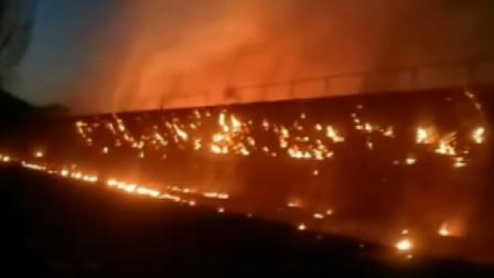 葫芦岛一菜园大棚发生火灾,消防员已赶到现场,起火原因正在调查