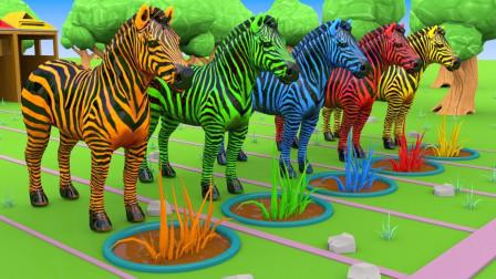 亲子早教动画斑马走出马棚吃草学颜色