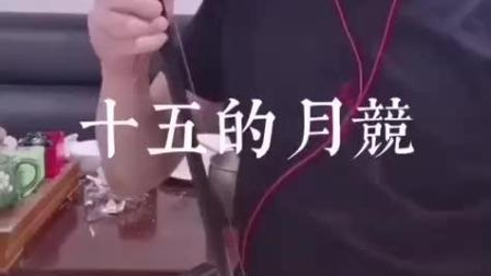大叔二胡演奏《十五的月亮》经典的旋律好听至极,百听不厌!
