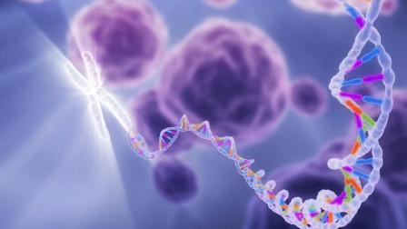 """人类基因的奥秘,只有2%的DNA在正常表达,剩下的都在""""沉睡"""""""