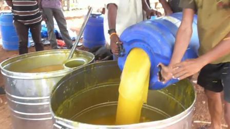 印度芒果干制作过程,隔着屏幕都是芒果味,看完你还想吃吗?
