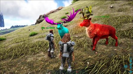 方舟生存进化:VS系列大角鹿挑战圣诞鹿看谁跑的快