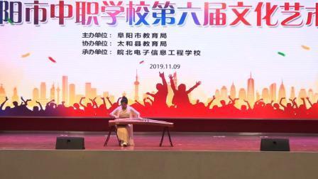 阜阳市中等职业学校第六届文化艺术节文艺类节目展演承办一皖北电子信息工程学校【二】