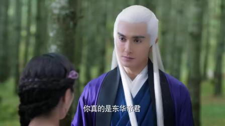 东华帝君英雄救美,凤九被他迷住了,孽缘就是从这开始的