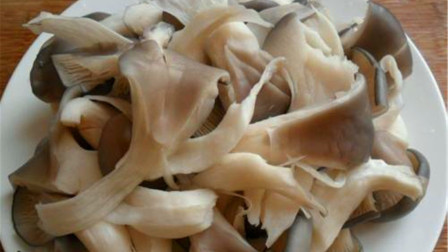 蘑菇这样做地道又好吃,做法简单味道鲜美,比吃红烧肉还解馋