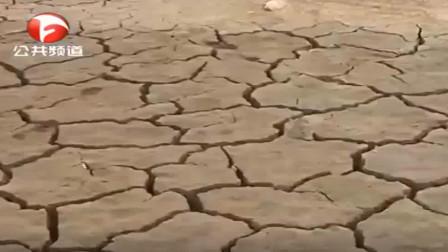 旱情持续恶化,安徽将抗旱应急响应等级提升至Ⅲ级
