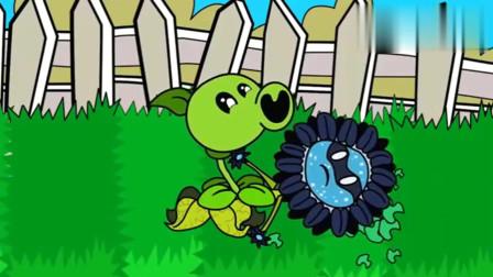 植物大战僵尸:太阳花恢复正常