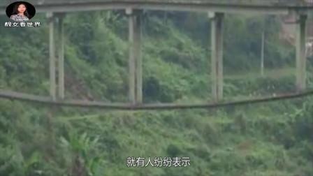 """我国最""""怪""""的大桥,设计师初中文化,网友:是不是施工图拿反了?"""