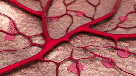 肺炎盛行,中老年人如何提高免疫力?这两个运动有助预防肺部疾患