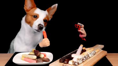 在双十一和狗狗一起直播,吃美味的手指饼干,狗狗都快馋哭了