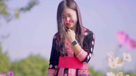 美丽的越南苗族姑娘