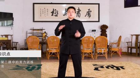 陈家沟名师一招一式讲透太极发力技巧,想学太极拳的拳友有福了