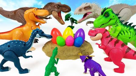 彩色恐龙蛋玩具拆箱发现小恐龙们