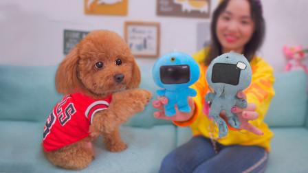 狗狗唯一的玩具坏了,主人四处托人寻来个新的,狗子抱住就不撒手