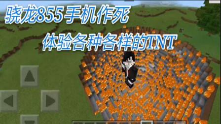 我的世界:当满是TNT的小岛被引爆,我的手机会不会炸机呢?