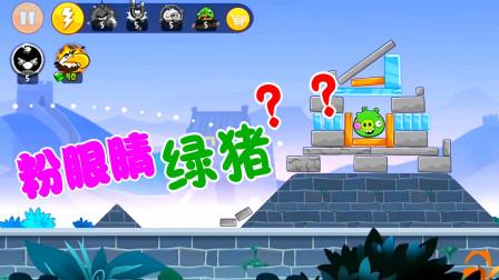 13 海涛哥哥游戏解说 愤怒的小鸟烽火年代打一只粉眼睛的小绿猪