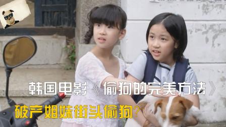 爆笑喜剧《偷狗的完美方法》:破产姐妹放学绑架小狗,敲诈老奶奶