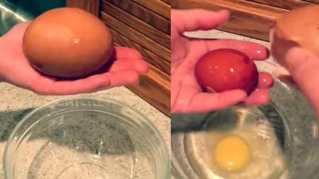 """活久见!农民发现巴掌大鸡蛋 打开一看竟是神奇""""蛋中蛋"""""""