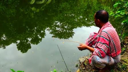 家里没肉了,印度大叔水塘边抛几竿,看看他钓到了啥鱼?