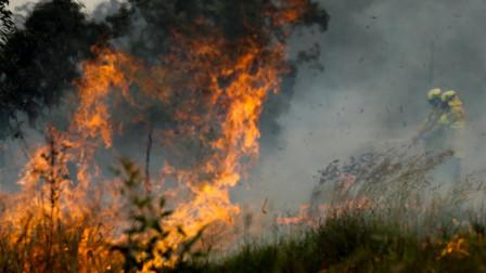 山火肆虐澳面临灾难级威胁 当局发最高级别警告