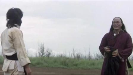 蛇鹤八步:头再硬也没有两块铁球硬啊!龙叔一套连招打得对手措手不及