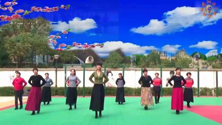 广场舞《秋风吹落一滴泪》优美中三舞、团队版、制作:永不疲倦