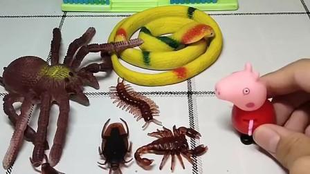 佩奇放学准备回家,看见了很多的蟑螂和蜘蛛,你们愿意帮佩奇回家吗?