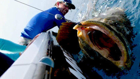 小哥出海钓鱼,大家伙上钩了,小哥险些被拉下海