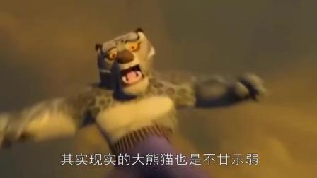 盖世英雄就是不一样,连尿尿都是高难度动作,现实版的功夫熊猫啊