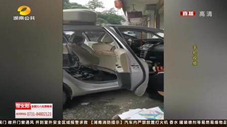 """菜花蛇隐藏在车内,汽修厂上演""""捉蛇记"""""""