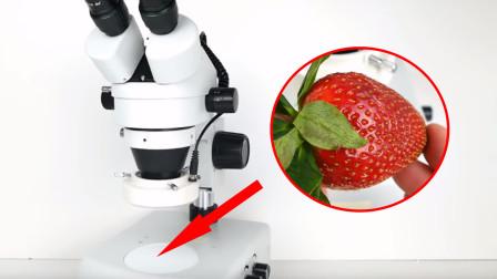 把草莓放显微镜下,用400倍放大观察,看完还敢再吃一颗吗?