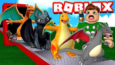 小格解说 Roblox 元素龙大亨:建造超级龙蛋工厂!我成了驯龙高手?乐高小游戏