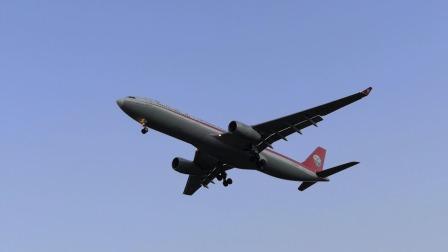空港花田看飞机
