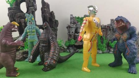 火焰哥尔赞抓住了黄金赛罗征服了小怪兽歌尔赞换了新头衔