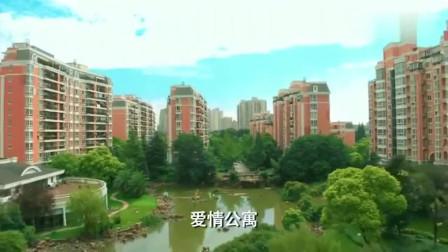 爱情公寓:爱情公寓5来了, 美嘉子乔生了娃,曾小贤去沙漠电台