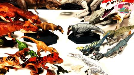 多种恐龙玩具展示,霸王龙翼龙,一只白色恐龙,多种恐龙聚集,儿童玩具亲子互动