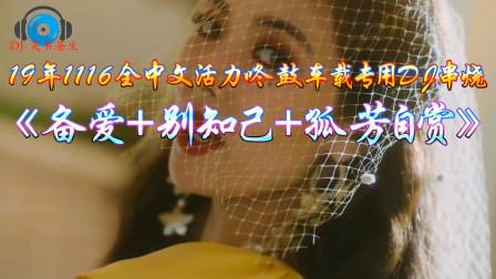 19年1116全中文活力咚鼓《备爱+别知己+孤芳自赏》车载专用DJ串烧