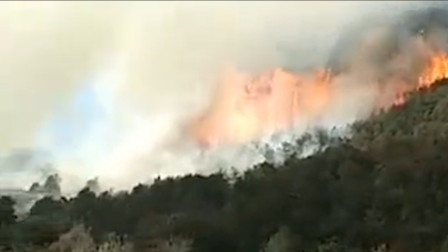 安徽铜陵郊区突发山火 当地持续干旱山上水源紧张