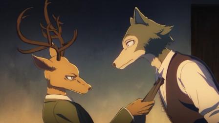 一个禁止吃肉的世界,却有动物夜晚死亡,大灰狼羚羊联手寻找凶手