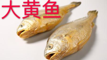 有国鱼之称的大黄鱼aka黄花鱼,中国养殖产量最高的海鱼(上集)