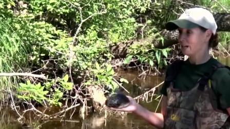 女子在河边捡到河蚌,想带回家吃掉,撬开之后直呼赚了