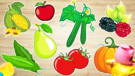 认识南瓜等8种水果蔬菜,小马识果蔬